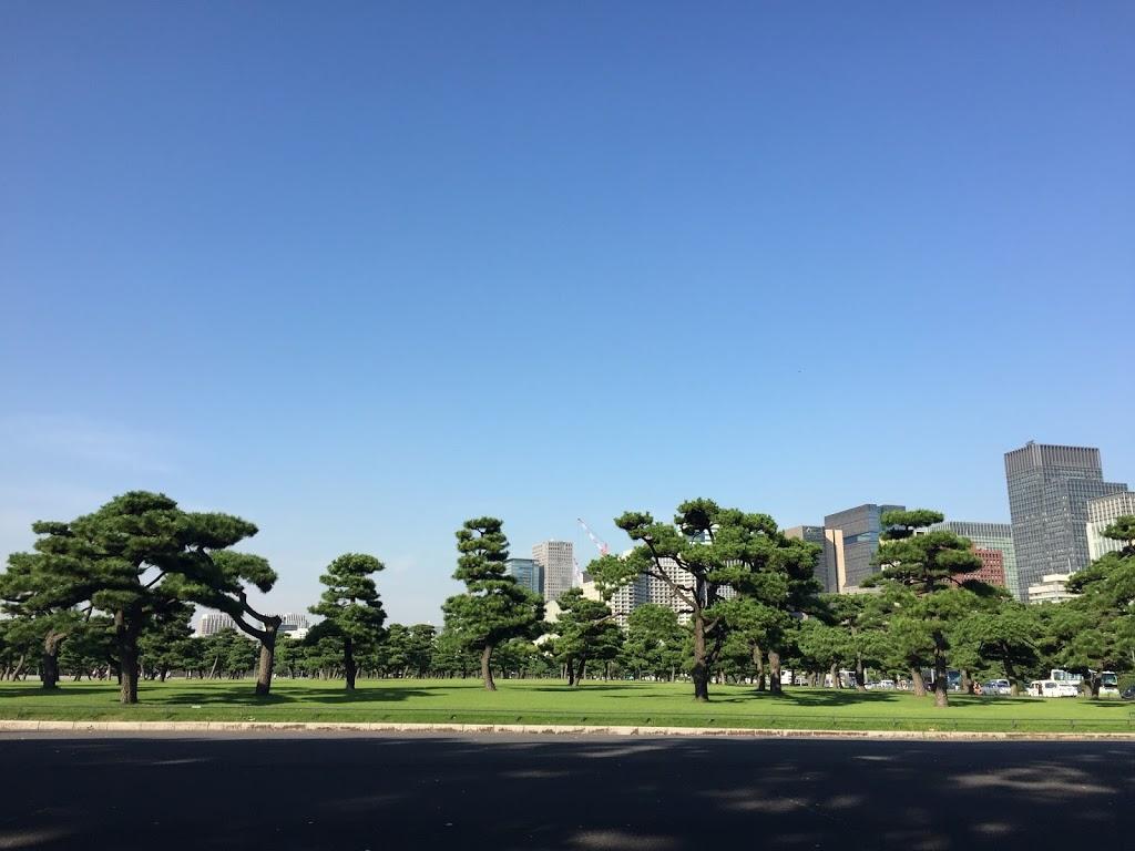 En Sevdiğim Şehir Tokyoda Yapılacaklar Listesi 2