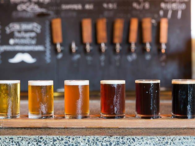 En Harika Biranın İzinde Amsterdam Barları Turlamaca